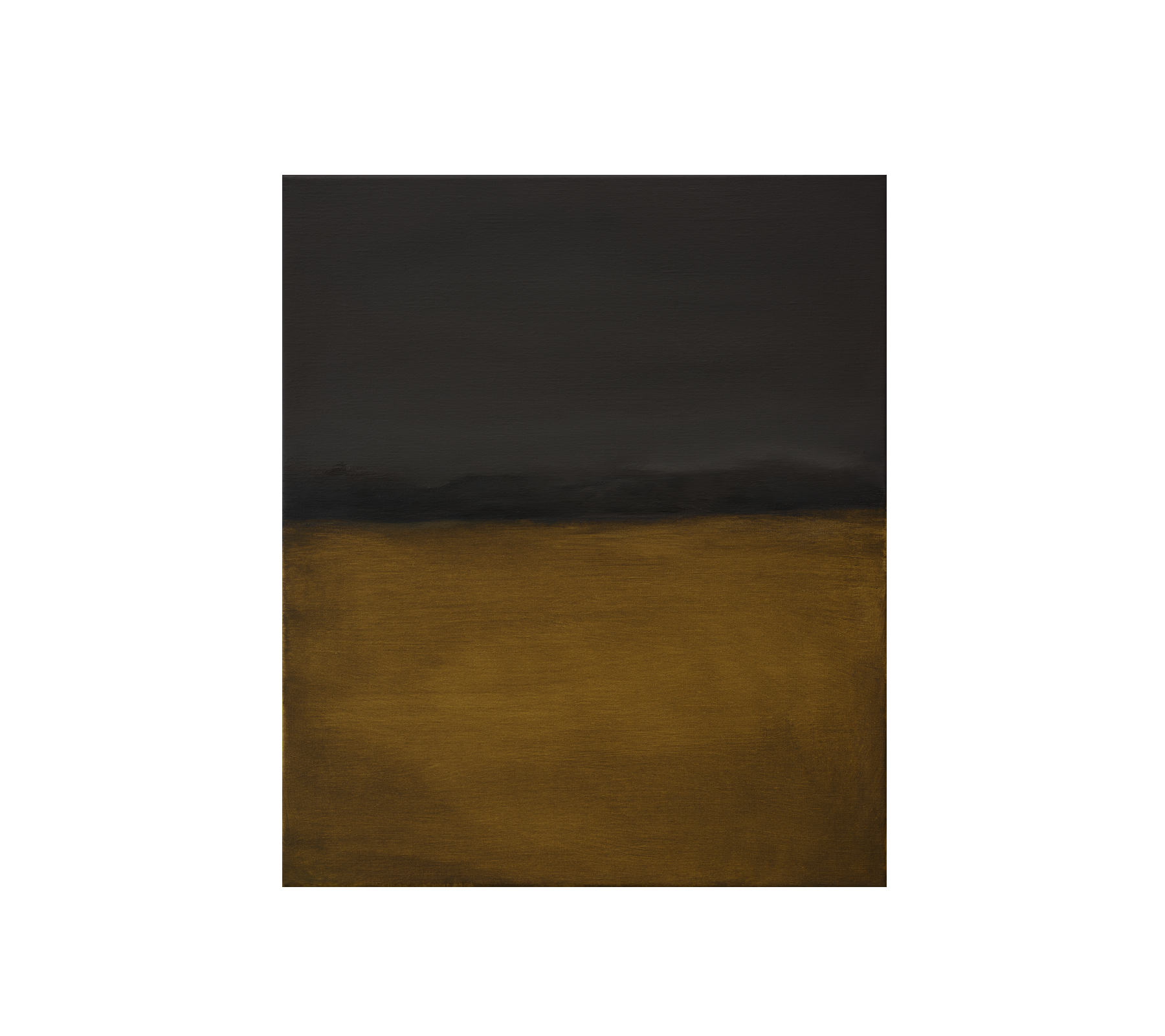 Untitled 2017 50x40cm
