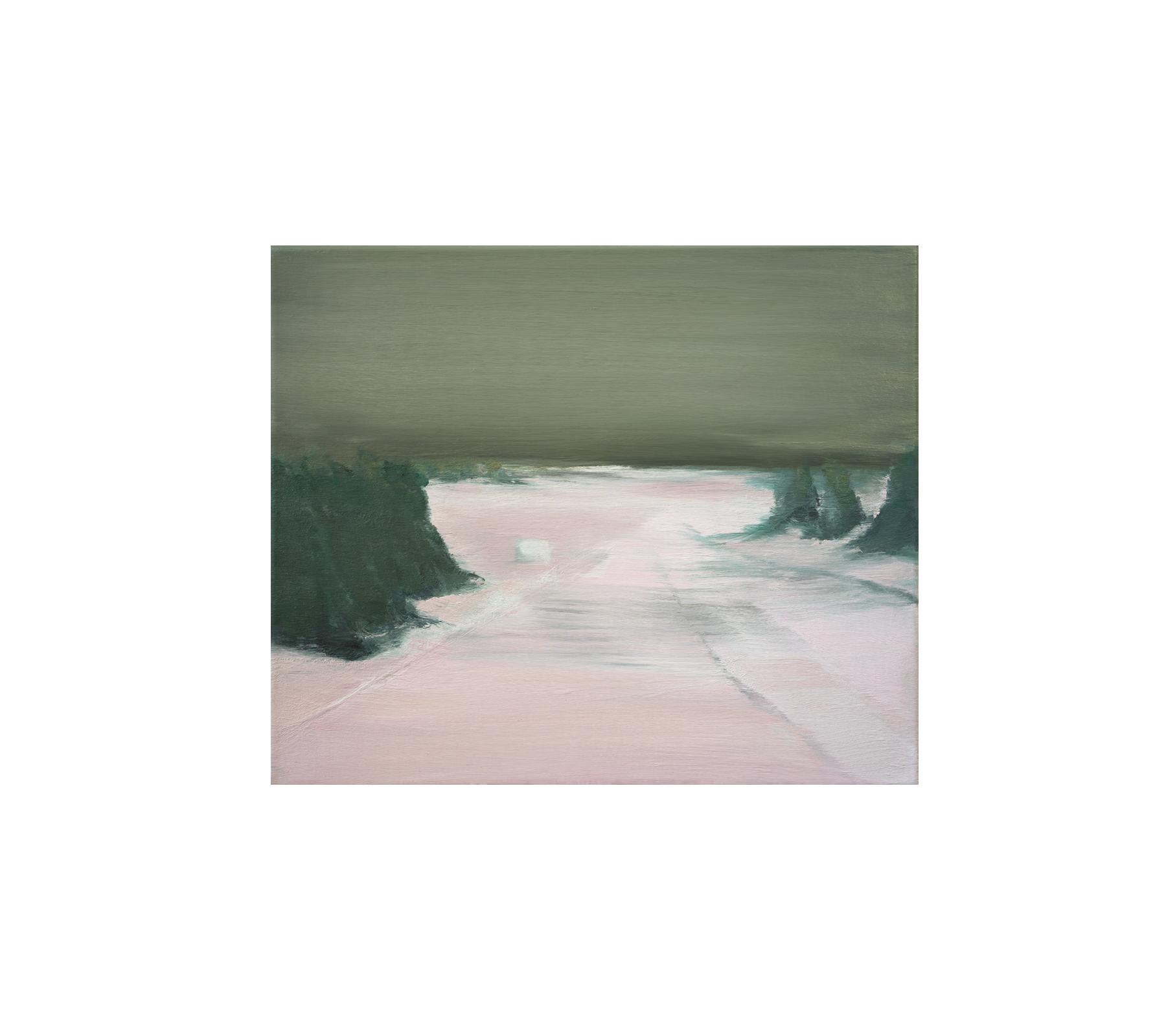 Untitled 2017 50x60cm
