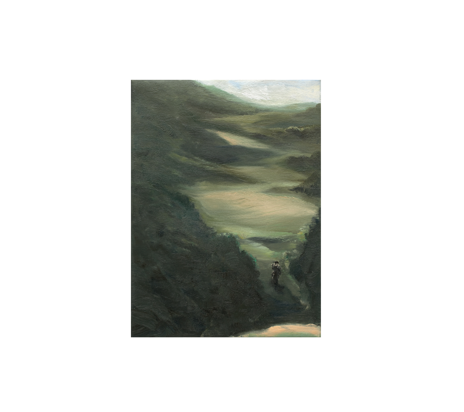 Hiker 2014 40x30cm
