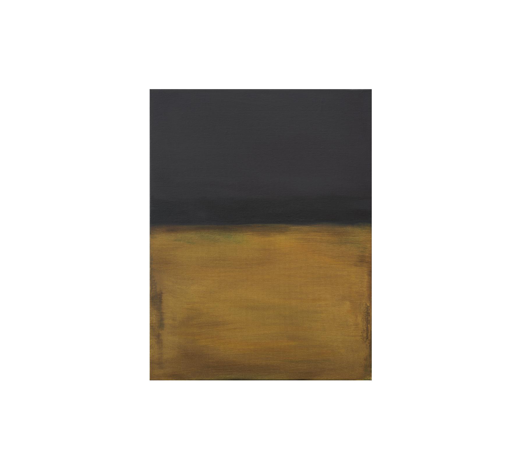 Untitled 2029 65x50cm