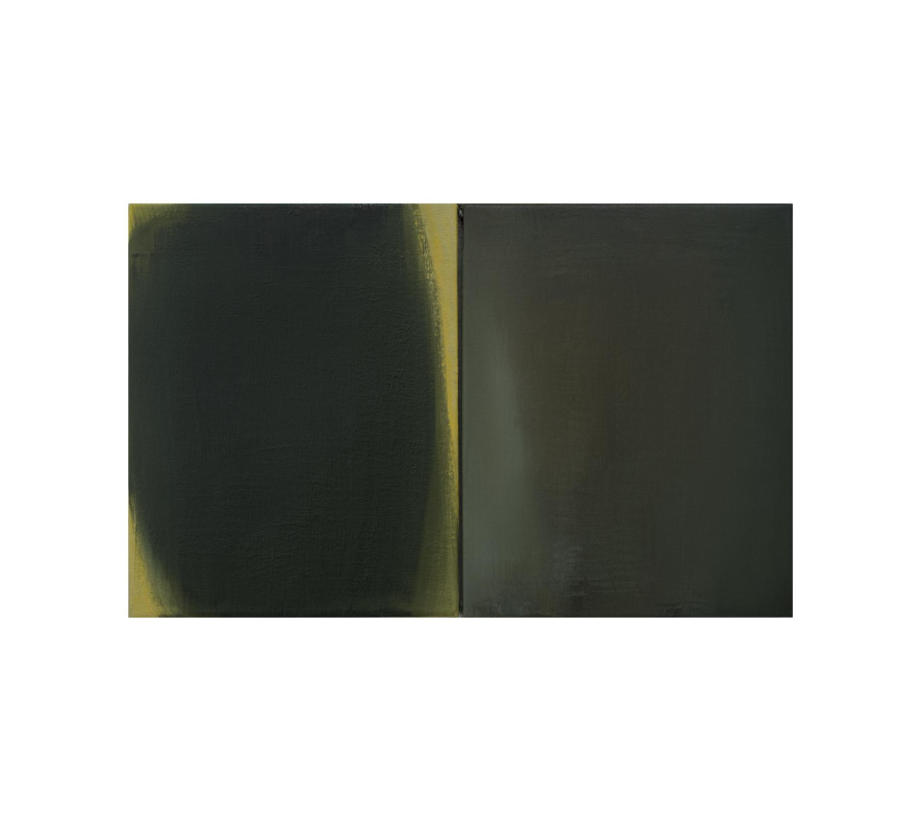 The shadow 2021 diptych 50x80cm
