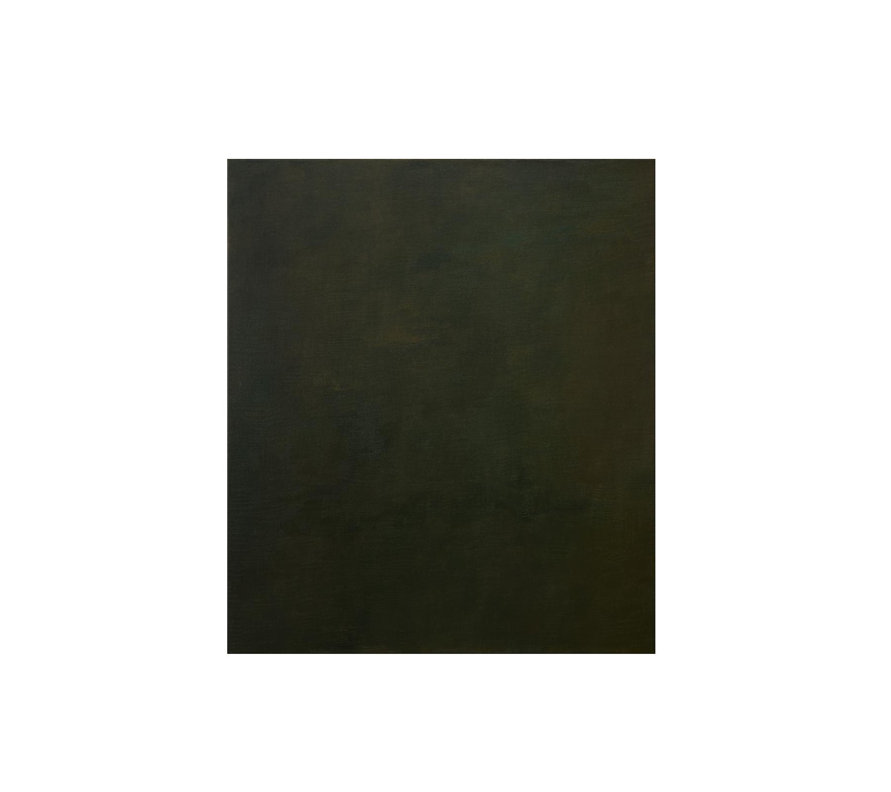 Shadow 2021 150x130cm